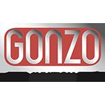 GONZO Aviation